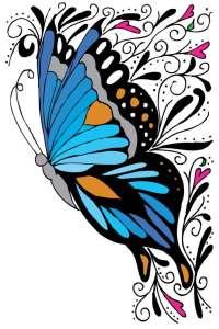 butterflymdlow
